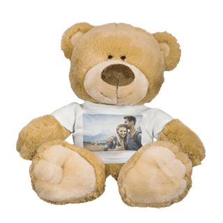 Photo Teddy Bear