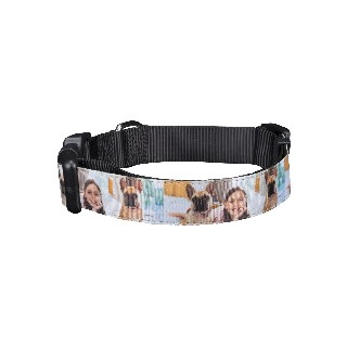 Pet Photo Collar