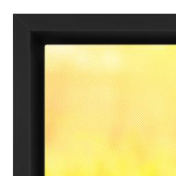 Thumbnail for 12x36 Photo Canvas With Floating Frame with Full Photo design 3