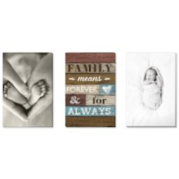 "Thumbnail for 3 Piece Canvas Cluster (24"" x 52"") with Three Of A Kind: Family Means Forever design 1"