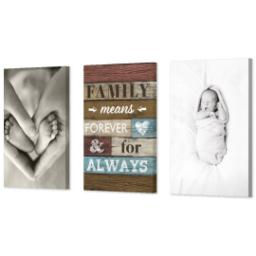 "Thumbnail for 3 Piece Canvas Cluster (24"" x 52"") with Three Of A Kind: Family Means Forever design 2"