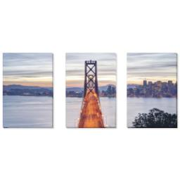 "Thumbnail for 3 Piece Canvas Cluster (24"" x 52"") with Three Of A Kind: Full Photo design 1"