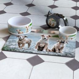 Thumbnail for Pet Bowl 39oz with Full Photo design 5